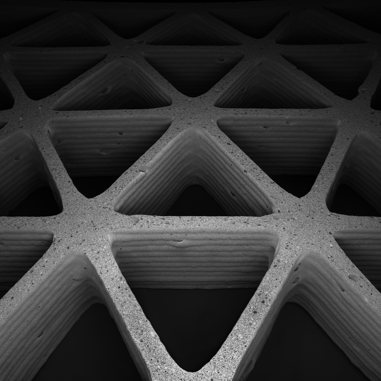 Mimicking Nature's Cellular Architectures Via 3D Printing