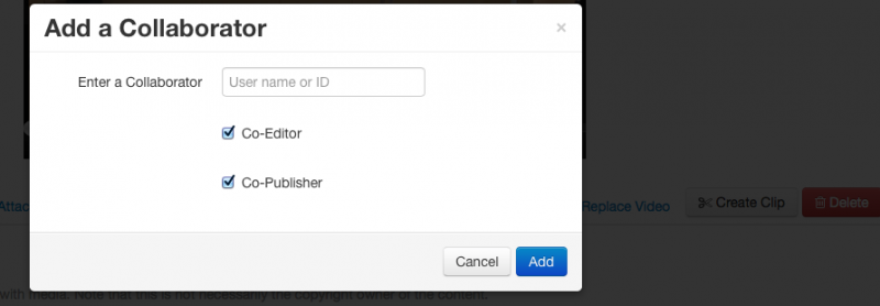 Screenshot of the collaborator modal window with permissions check boxes checked.
