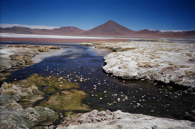 Archaea inhabit some of Earth's most extreme environments, such as this salt lake in Bolivia. (Image courtesy of Ariel Amir/Havard SEAS)