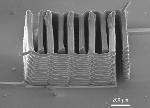 SEM of 3D-printed battery