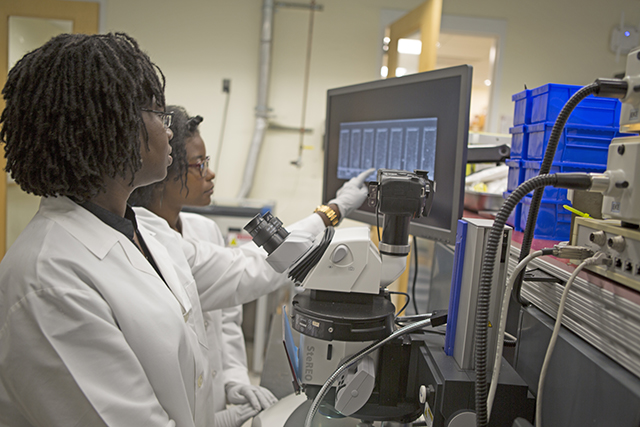 Renita Horton, Ph.D. '14 (left) and Sydney Reed, an undergraduate at Mississippi State University, examine a sample in the lab of Kit Parker, Tarr Family Professor of Bioengineering and Applied Physics. (Photo by Adam Zewe/SEAS Communications)