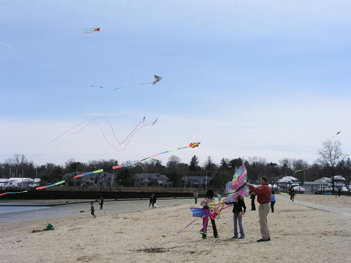 people on the beach flying kites