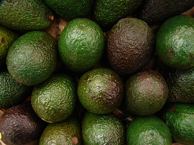 A display of avocados