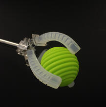 Harvard researchers have developed a platform for creating soft robots with embedded sensors that can sense movement, pressure, touch, and temperature. (Image courtesy of Lori Sanders/Harvard University)