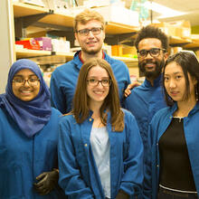 IGEM team members (from left) Tajrean Rahman, Nathan Sharp, Jessica DeVilla, Aaron Hodges, Faye Huo, and Mark Theodore Meneses, genetically engineered E. coli bacteria to provide treatment for common skin ailments. (Photo by Adam Zewe/SEAS Communications)