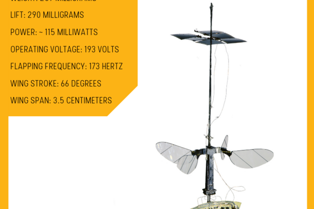 Image of the RoboBee with statistics about its weight and