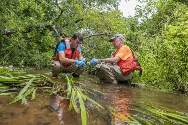 image of researched collecting samples from a creek