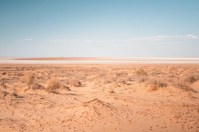 image of drylands