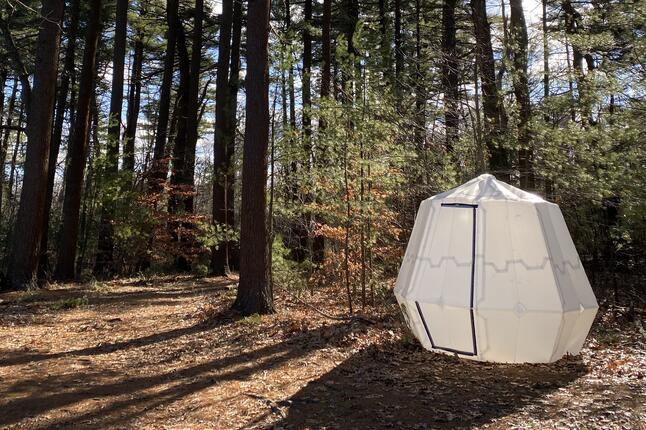 image of inflatable structure in the woods