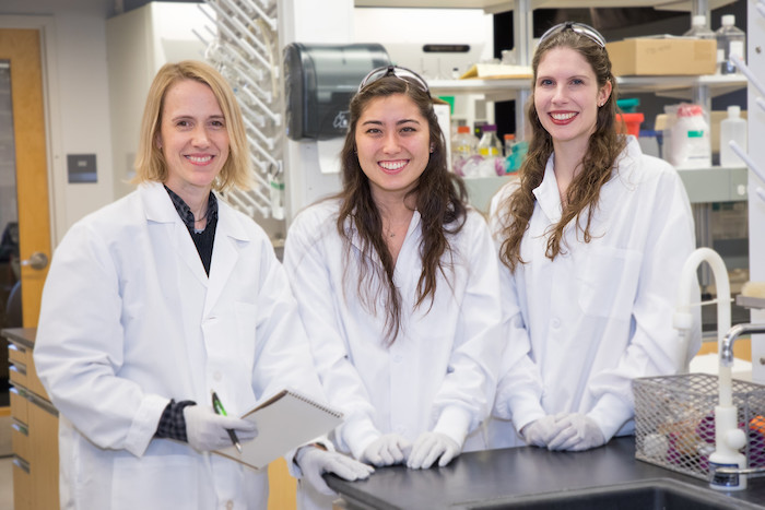 From left: Elsie Sunderland, the Gordon McKay Professor of Environmental Chemistry, Nicole Nishizawa, S.B. '19, and Andrea K. Tokranov, a graduate student in the Sunderland lab.