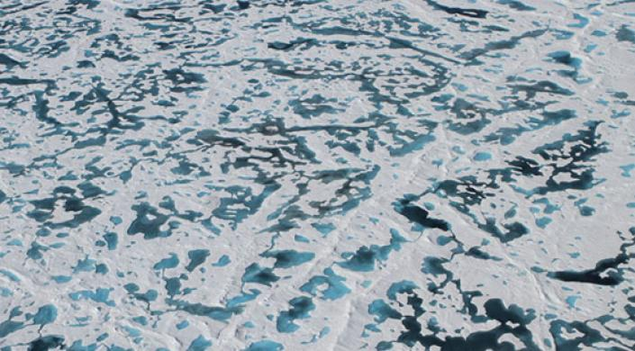 Melt ponds darken the surface of thinning Arctic sea ice, creating conditions friendly to algae blooms under the ice. (Image courtesy of NASA)